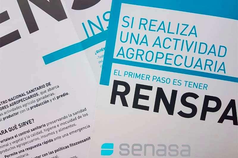 Resultado de imagen para Que es el RENSPA